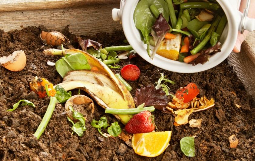 compostage domestique