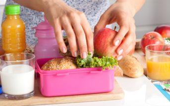 Histoire de la lunch box : du métal aux matières écologiques