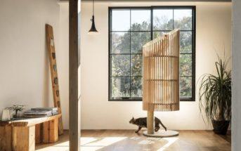 L'arbre à chat design : un élément de décoration à part entière