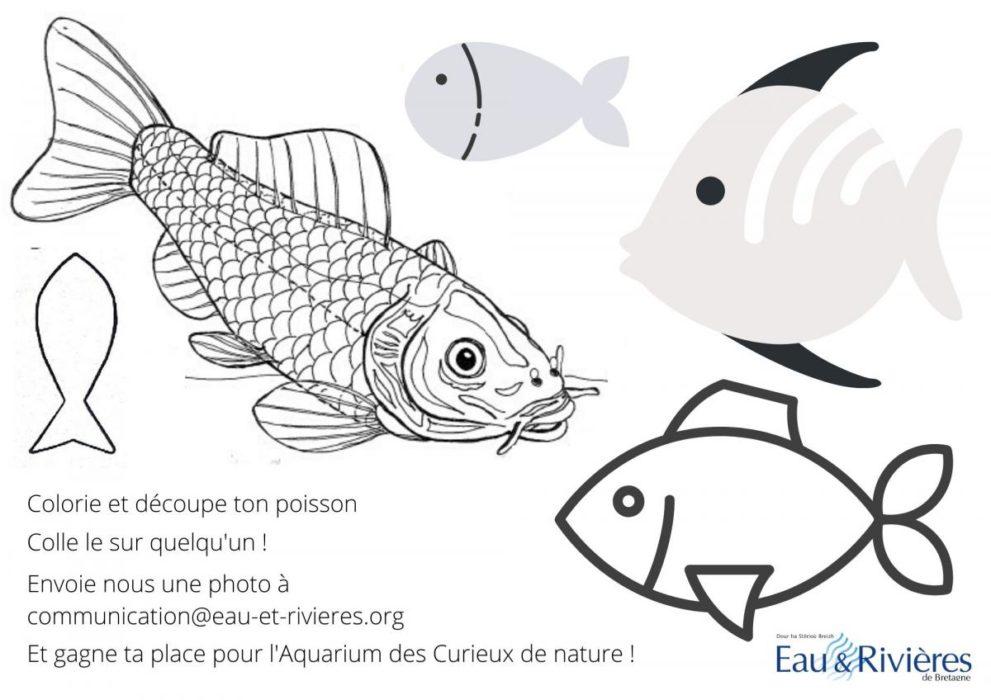 concours de poisson d'avril