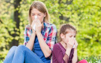 Quels aliments contre les allergies au pollen ?