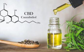 Huile CBD : que faut-il savoir sur l'huile de Cannabidiol ?