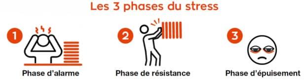 phases du stress