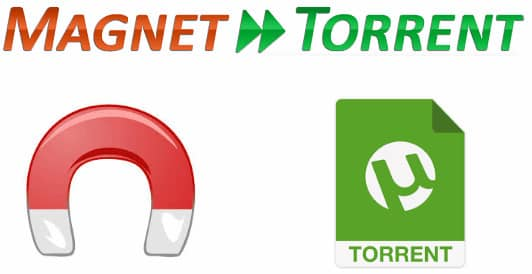 magnet torrent