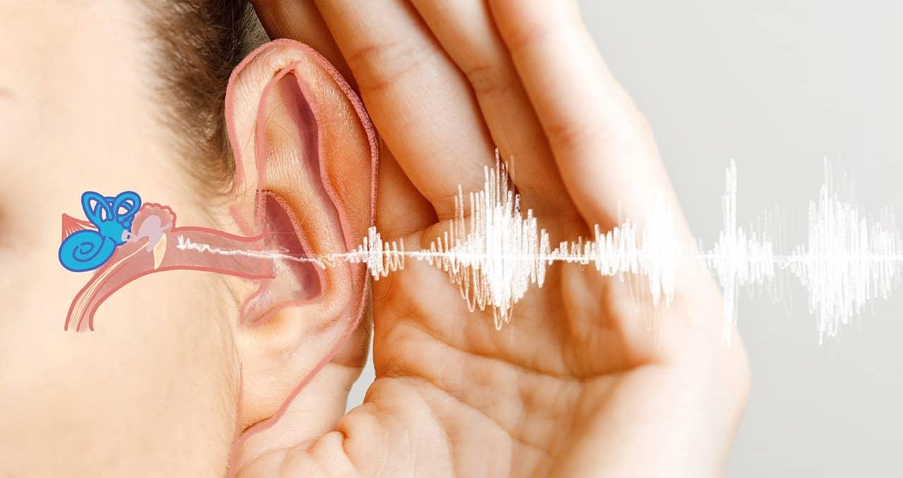 causes de la perte auditive