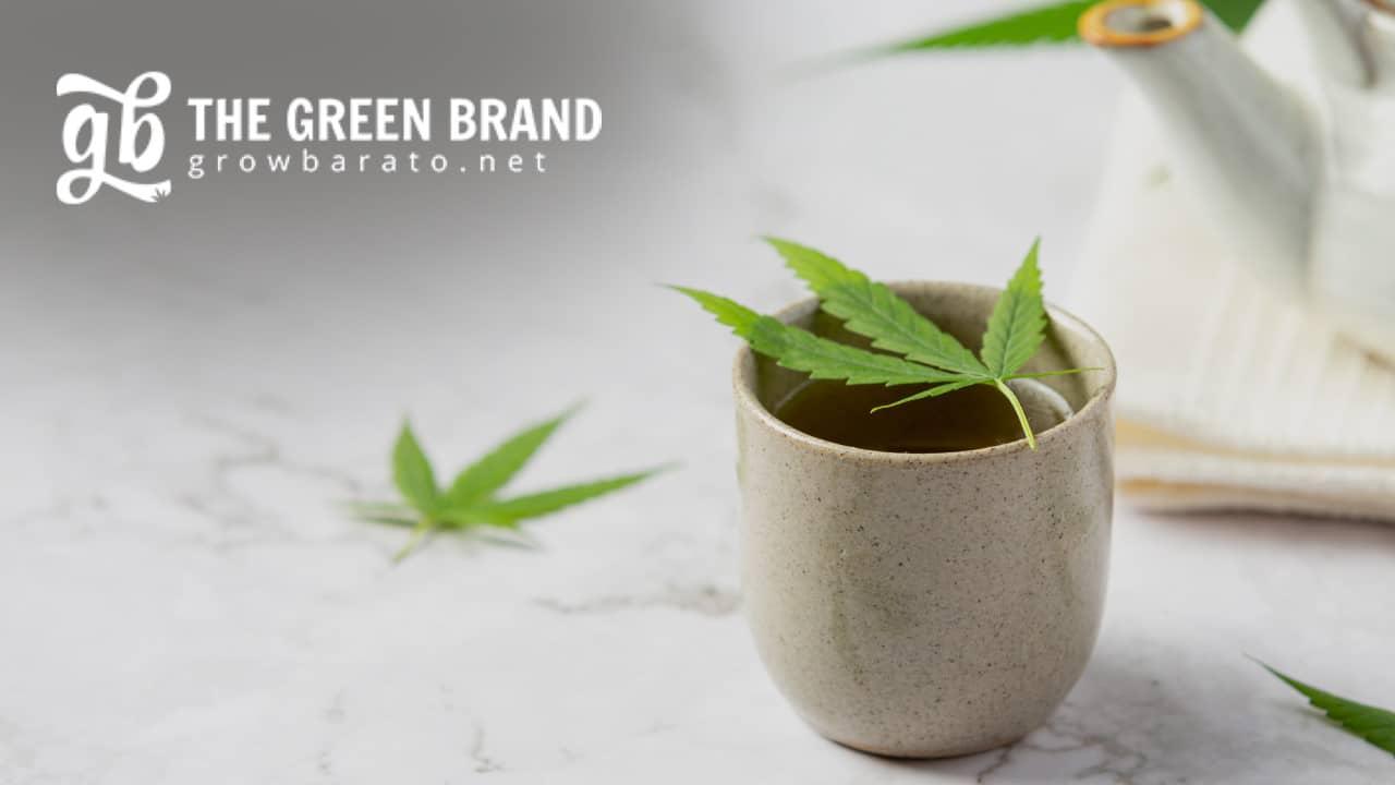 GB The Green Brand growbarato