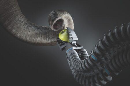 Trempe naturelle et robot