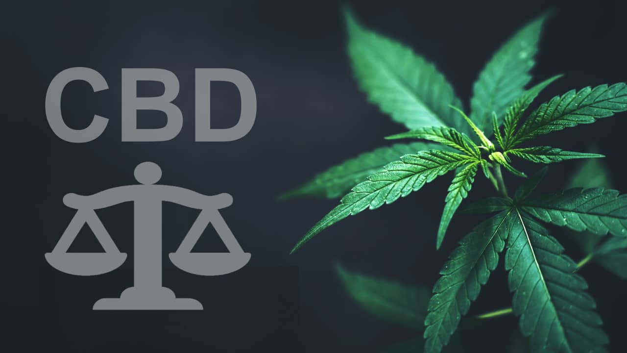 CBD législation France