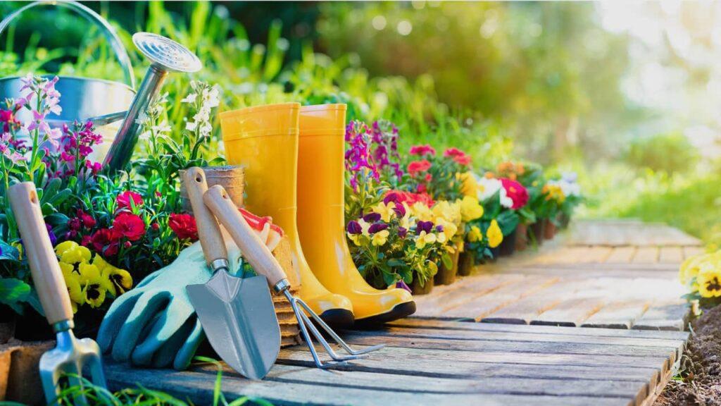 jardinage : comment colorer son jardin ?