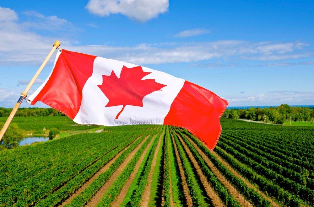 Le Canada utilisera plus de technologies propores