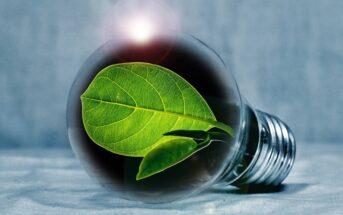 Électricité verte : qu'est ce qu'une énergie propre et écologique ?