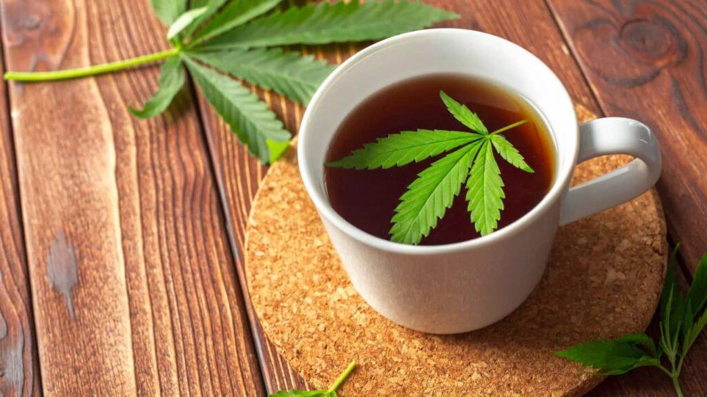 infusion au cbd : thé ou tisane