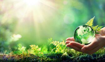 La journée mondiale de l'environnement en image