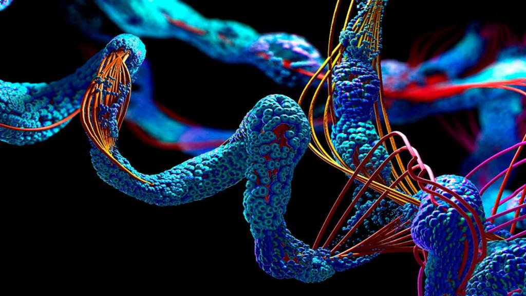 Prédiction des protéines humaines en image