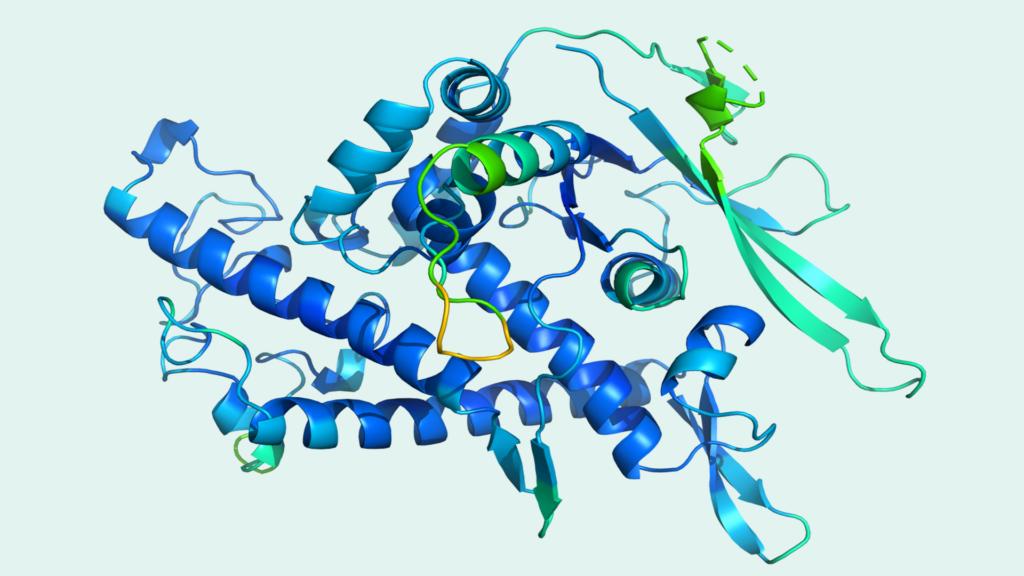 Prédiction des protéines en image