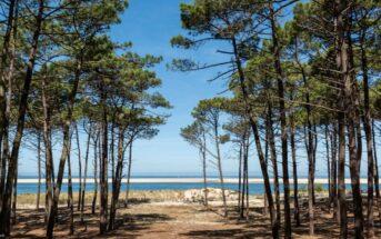 Vacances dans les Landes : top 10 des activités à faire !