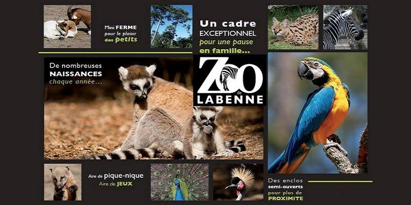 Activité zoo pendant des vacances dans les Landes