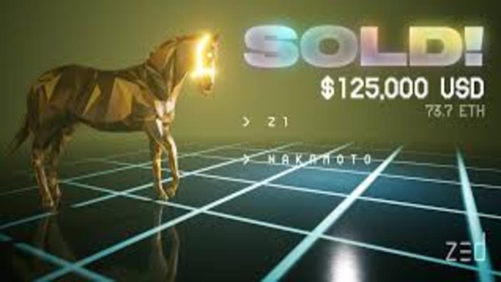 Cheval vendu à 125 000 $ en image.