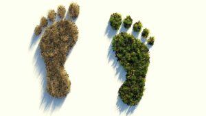 empreinte-ecologique
