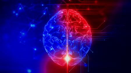 Google Medical Brain en image