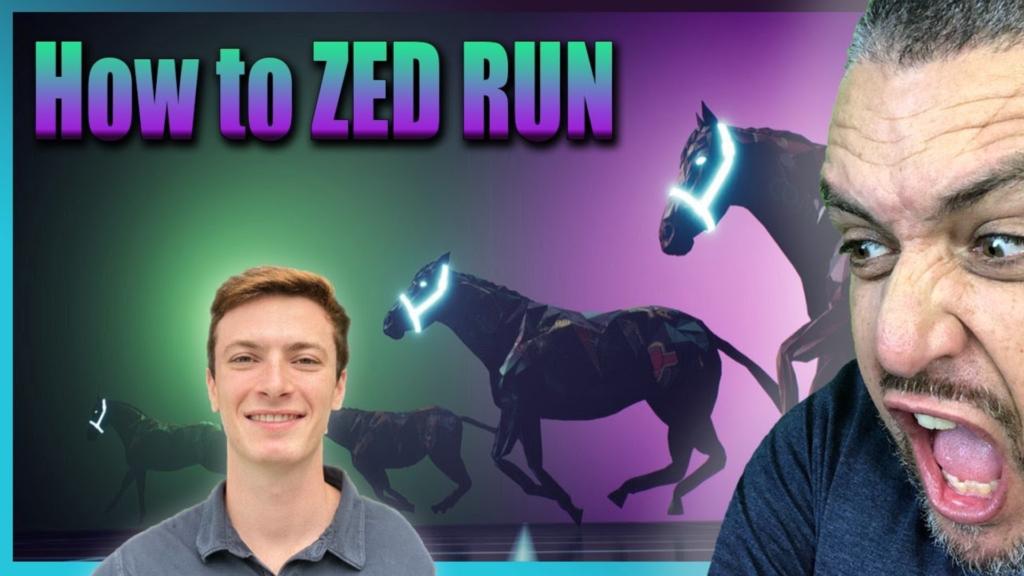 Miami Zed Run en image