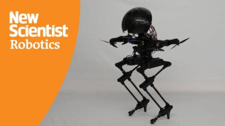 Le robot bipède Leonardo en image.